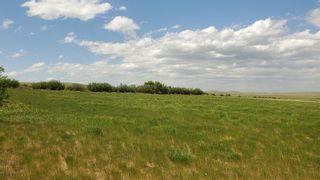 Photo 3: Range Road 263 in Rural Willow Creek No. 26, M.D. of: Rural Willow Creek M.D. Land for sale : MLS®# C4070513