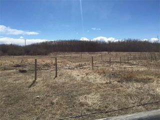 Photo 14: 32182 TWP RD 262 in Rural Rockyview County: Rural Rocky View MD House for sale : MLS®# C4006884