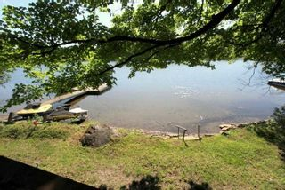 Photo 8: 95 Shadow Lake 2 Road in Kawartha Lakes: Rural Somerville House (Bungalow) for sale : MLS®# X4798581