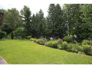 Photo 17: 7076 FIELDING Court in Burnaby: Government Road House for sale (Burnaby North)  : MLS®# V1030816