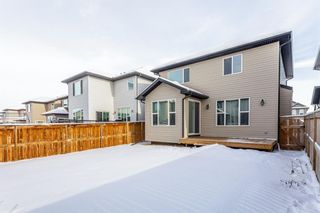 Photo 31: 1200 BRIGHTONCREST Common SE in Calgary: New Brighton Detached for sale : MLS®# A1066654