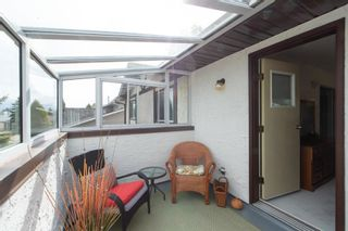 Photo 35: 14717 43A Avenue in Edmonton: Zone 14 House for sale : MLS®# E4246665