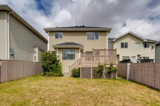 Photo 44: 131 Citadel Crest Green NW in Calgary: Citadel Detached for sale : MLS®# A1124177