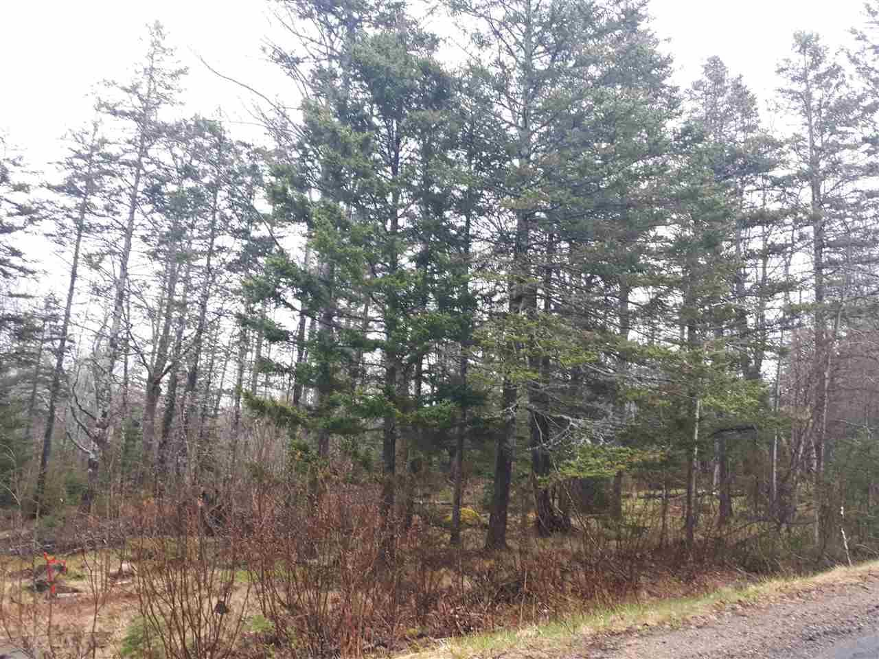 Main Photo: LOT Stronach Mountain Road in Forest Glade: 400-Annapolis County Vacant Land for sale (Annapolis Valley)  : MLS®# 201924165