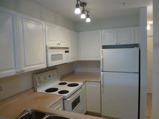 """Photo 5: 309 2388 TRIUMPH Street in Vancouver: Hastings Condo for sale in """"ROYAL ALEXANDRA"""" (Vancouver East)  : MLS®# R2157948"""