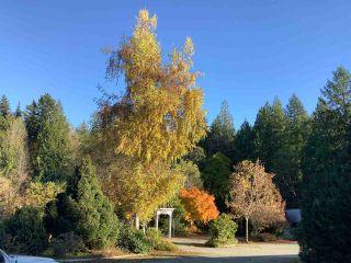 Photo 23: 5245 SELMA PARK Road in Sechelt: Sechelt District House for sale (Sunshine Coast)  : MLS®# R2516118