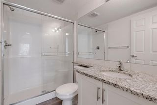 Photo 16: 4208 279 Copperpond Common SE in Calgary: Copperfield Apartment for sale : MLS®# A1095874