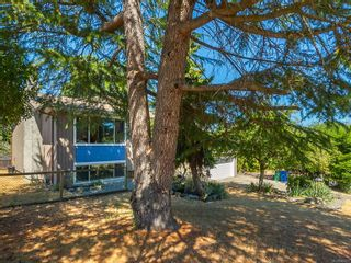 Photo 42: 3002 Persimmon Pl in Nanaimo: Na Departure Bay House for sale : MLS®# 883627