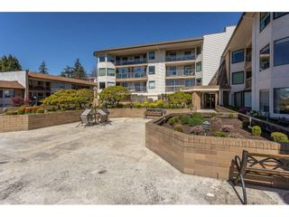 "Photo 4: 615 1350 VIDAL Street: White Rock Condo for sale in ""Seapark East"" (South Surrey White Rock)  : MLS®# R2567931"