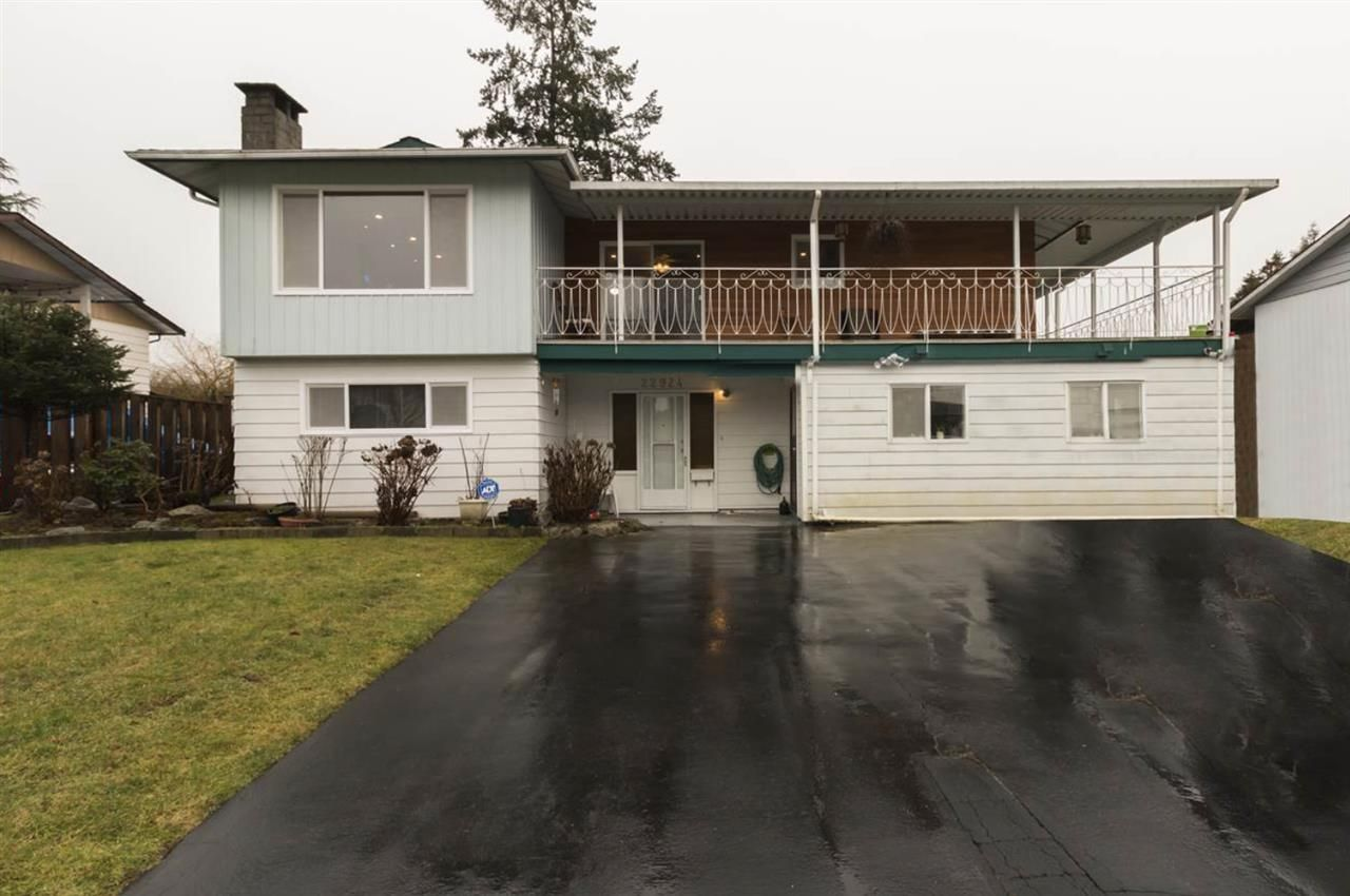Main Photo: 22924 123 Avenue in Maple Ridge: East Central House for sale : MLS®# R2506133