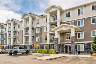 Photo 30: 3211 522 Cranford Drive SE in Calgary: Cranston Apartment for sale : MLS®# A1150628