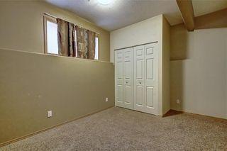Photo 35: 207 SADDLEMEAD Close NE in Calgary: Saddle Ridge Detached for sale : MLS®# C4236086