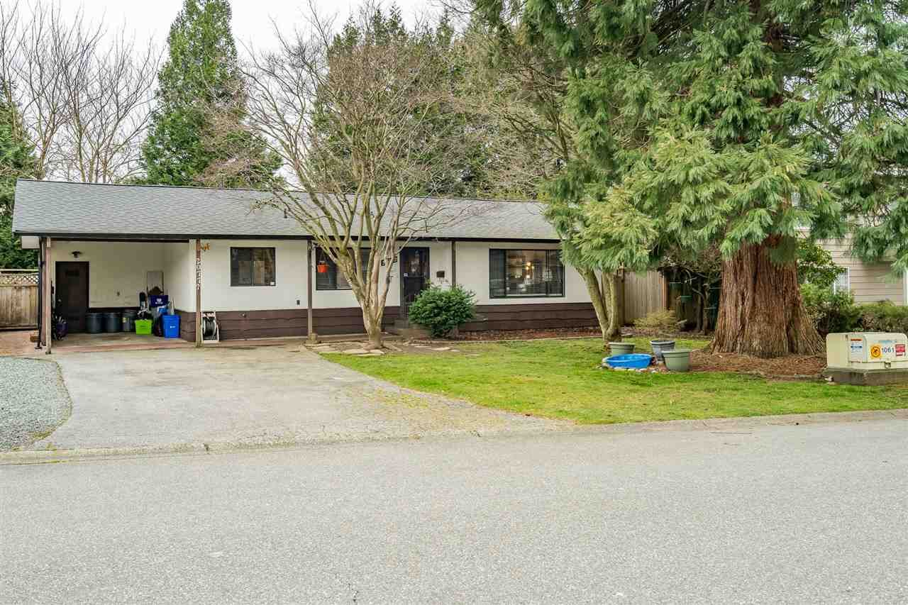 Main Photo: 20772 52 Avenue in Langley: Langley City House for sale : MLS®# R2565205