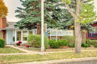 Photo 44: 248 Midlake Boulevard SE in Calgary: Midnapore Detached for sale : MLS®# A1144224