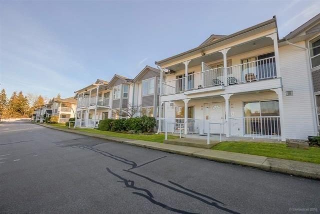 Main Photo: 35 12296 224 Street in Maple Ridge: East Central Townhouse for sale : MLS®# R2141364
