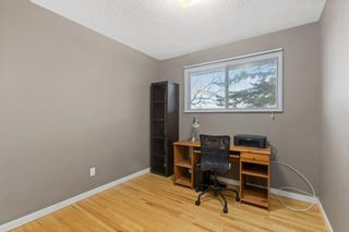 Photo 11: 2339 Maunsell Drive NE in Calgary: Mayland Heights Detached for sale : MLS®# A1059146