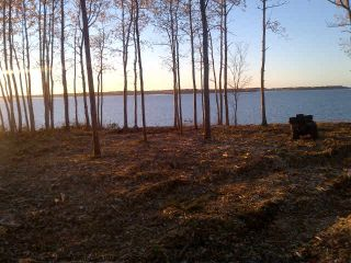 Photo 6: Lot 07-1 Shore Road in Lower Barneys River: 108-Rural Pictou County Vacant Land for sale (Northern Region)  : MLS®# 202104408