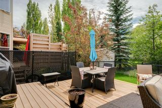 Photo 33: 19 Discovery Ridge Gardens SW in Calgary: Discovery Ridge Detached for sale : MLS®# A1116891