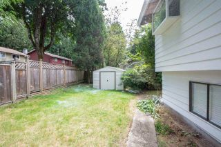 Photo 9: 7074 114A Street in Delta: Sunshine Hills Woods House for sale (N. Delta)  : MLS®# R2187880
