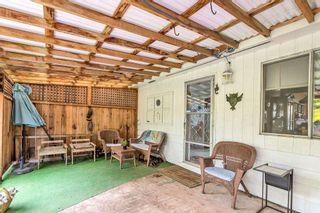 Photo 30: 11785 210 Street in Maple Ridge: Southwest Maple Ridge House for sale : MLS®# R2599519
