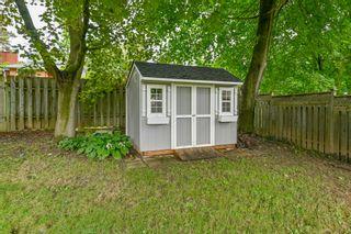 Photo 51: 39 Maple Avenue in Flamborough: House for sale : MLS®# H4063672