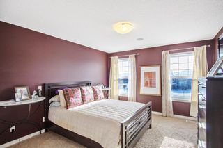 Photo 16: 12 Skyview Springs Crescent NE in Calgary: Skyview Ranch Detached for sale : MLS®# A1067284