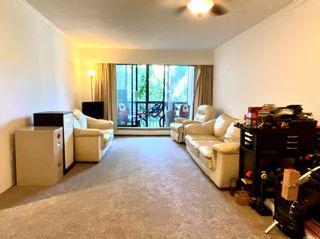 Photo 7: 219 1005 McKenzie Ave in : SE Quadra Condo for sale (Saanich East)  : MLS®# 883066