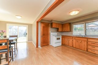 Photo 22: 911 Dogwood St in : CR Campbell River Central House for sale (Campbell River)  : MLS®# 886386