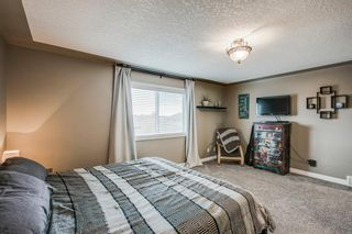 Photo 25: 234 Canoe Square SW: Airdrie Detached for sale : MLS®# A1043547