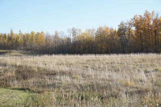 Photo 12: 17 53214 RR13: Rural Parkland County Rural Land/Vacant Lot for sale : MLS®# E4266457