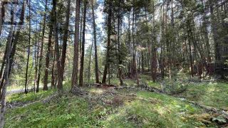 Photo 6: LOT 40 KALLUM DRIVE in 108 Mile Ranch: Vacant Land for sale : MLS®# R2591288