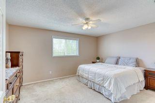 Photo 21: 14427 131 Street in Edmonton: Zone 27 House for sale : MLS®# E4246677