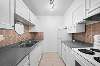 Photo 5: 159 200 WESTHILL Place in Port Moody: College Park PM Condo for sale : MLS®# R2600780