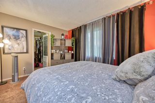Photo 14: 39 Erin Green Way SE in Calgary: Erin Woods Detached for sale : MLS®# A1118796