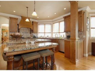 """Photo 7: 1880 169TH Street in Surrey: Pacific Douglas House for sale in """"HAZELMERE ESTATES"""" (South Surrey White Rock)  : MLS®# F1408410"""