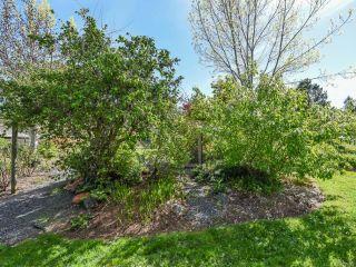 Photo 66: 1476 Jackson Dr in COMOX: CV Comox Peninsula House for sale (Comox Valley)  : MLS®# 810423
