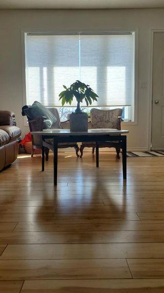 Photo 15: 4734 55 Avenue: Rimbey Detached for sale : MLS®# A1101105