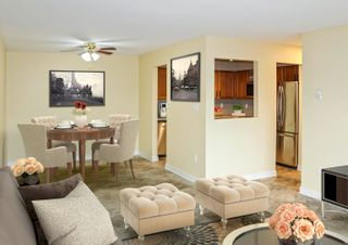 """Photo 4: 115 33490 COTTAGE Lane in Abbotsford: Central Abbotsford Condo for sale in """"Cottage Lane"""" : MLS®# R2611244"""