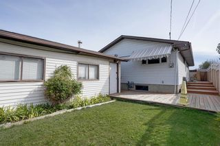 Photo 15: 3307 39 Street SE in Calgary: Dover Detached for sale : MLS®# A1148179