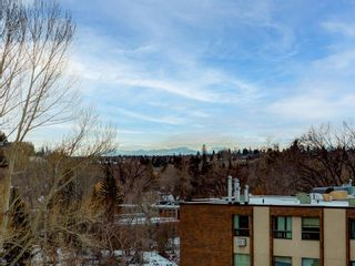 Photo 27: 6F 133 25 Avenue SW in Calgary: Mission Apartment for sale : MLS®# A1061991