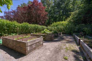 Photo 35: 1240 JUDD Road in Squamish: Brackendale House for sale : MLS®# R2444989
