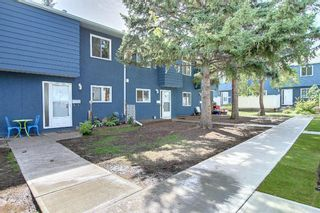 Photo 2: 45 251 90 Avenue SE in Calgary: Acadia Row/Townhouse for sale : MLS®# A1151127