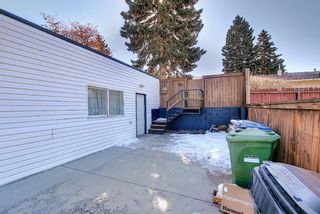 Photo 46: 56 Langton Drive SW in Calgary: North Glenmore Park Detached for sale : MLS®# A1081940