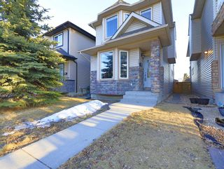Photo 38: 509 17 Avenue NW in Calgary: Mount Pleasant Detached for sale : MLS®# A1079030