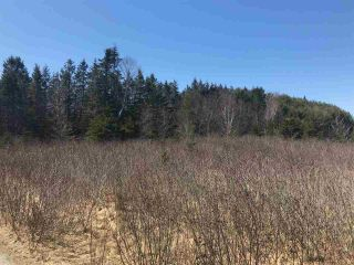 Photo 3: 11574 Highway 7 in Lake Charlotte: 35-Halifax County East Vacant Land for sale (Halifax-Dartmouth)  : MLS®# 201927372