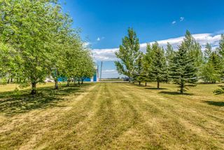 Photo 44: 251046 Rge Rd 263: Rural Wheatland County Residential Land for sale : MLS®# A1117285