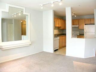 """Photo 7: 303 33478 ROBERTS Avenue in Abbotsford: Central Abbotsford Condo for sale in """"Aspen Creek"""" : MLS®# F2715413"""