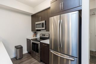 Photo 10: 110 10 Hill Grove Point in Winnipeg: Bridgwater Forest Condominium for sale (1R)  : MLS®# 202114396