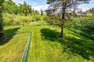 Photo 21: 31745 CHARLOTTE Avenue in Abbotsford: Abbotsford West House for sale : MLS®# R2579310