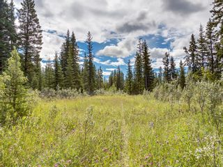 Photo 7: 7 34364 RANGE ROAD 42: Rural Mountain View County Land for sale : MLS®# A1017817